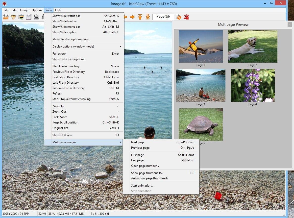 pantallazo IrfanView_24