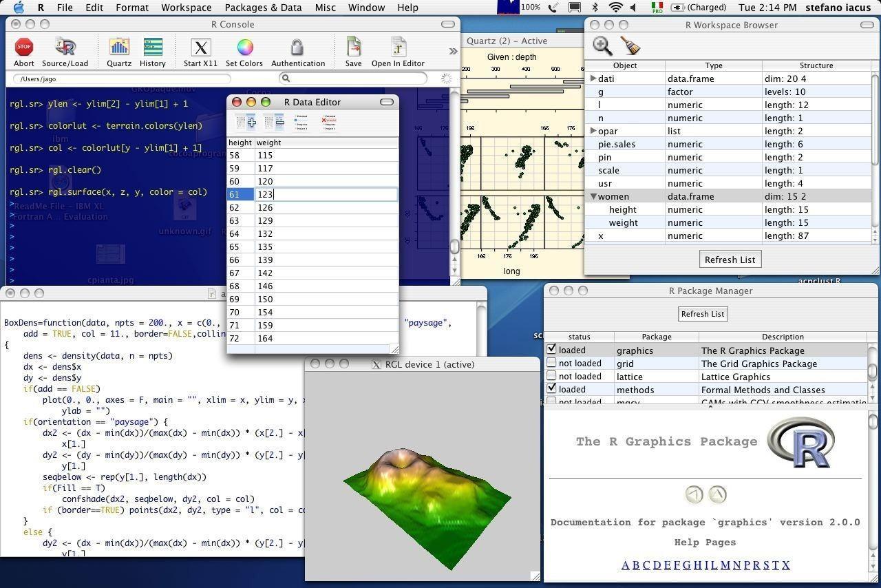 pantallazo R (programming language)_2